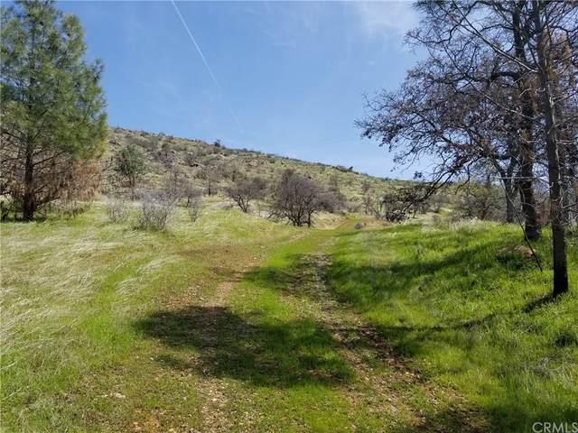 8256 Hunters Valley Road, Mariposa, CA 95338 (#MP21183758) :: Compass