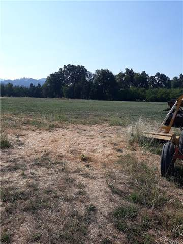 10256 Elk Mountain Rd., Upper Lake, CA 95485 (#LC21185821) :: Zutila, Inc.