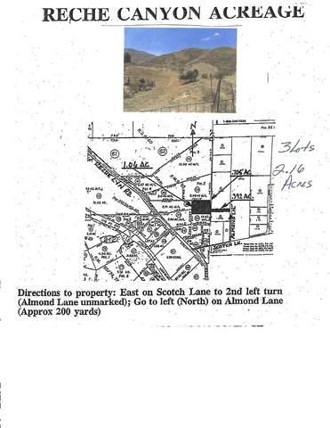 0 Almond Lnae, Colton, CA 92324 (#IV21189384) :: Corcoran Global Living