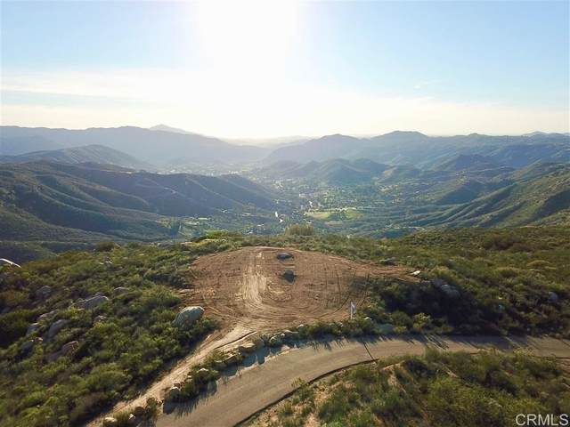 0 Rancho Willits Rd, Alpine, CA 91901 (#PTP2106156) :: Steele Canyon Realty