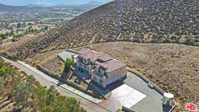 9455 Hierba Road, Agua Dulce, CA 91390 (#21779114) :: Steele Canyon Realty