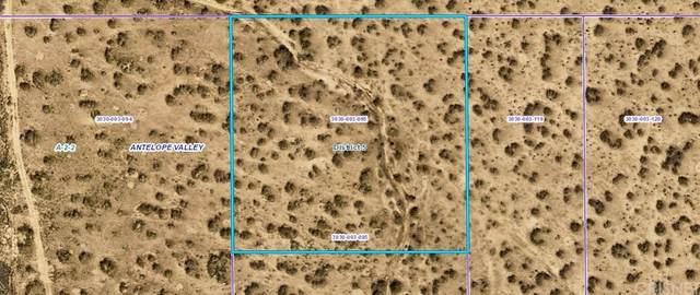 0 Vac/Vic Avenue R12/185 Ste, Llano, CA 93591 (#SR21194002) :: Compass