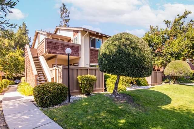148 Hackamore Lane, Fremont, CA 94539 (#ML81860960) :: Latrice Deluna Homes