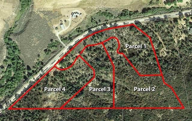 Sanderson Road, Pine Valley, CA 91962 (#210025110) :: Steele Canyon Realty