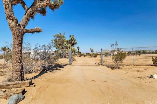 56635 Handley Road, Yucca Valley, CA 92284 (MLS #JT21192797) :: ERA CARLILE Realty Group