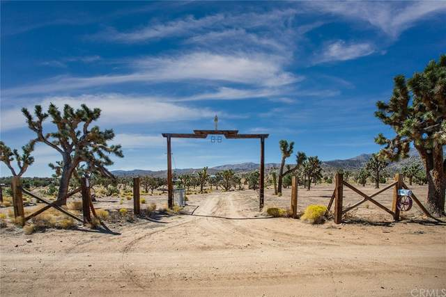 110 Wolf Tree Road, Lucerne Valley, CA 92356 (#JT21194739) :: Swack Real Estate Group | Keller Williams Realty Central Coast
