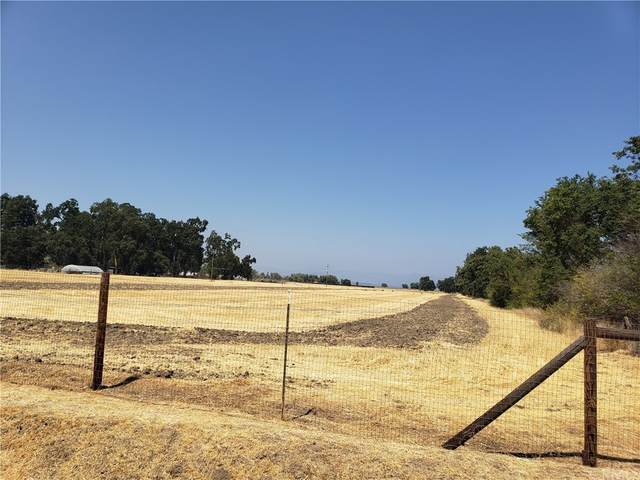 2350 Soda Bay Road, Lakeport, CA 95453 (#LC21195771) :: Steele Canyon Realty