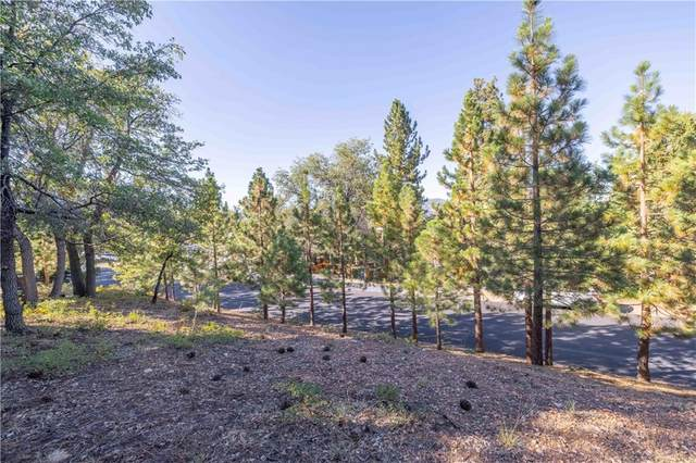 1415 Klamath Road, Big Bear, CA 92314 (#EV21195765) :: Steele Canyon Realty