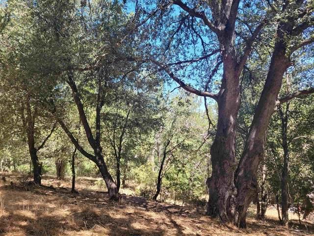 Pine Hills Rd, Julian, CA 92036 (#210025343) :: Corcoran Global Living