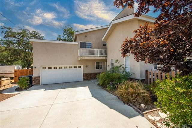 28660 Chiquito Canyon Road, Val Verde, CA 91384 (#SR21191739) :: Corcoran Global Living