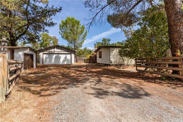 4585 S Terrace Avenue, Lakeport, CA 95453 (#LC21197802) :: Steele Canyon Realty