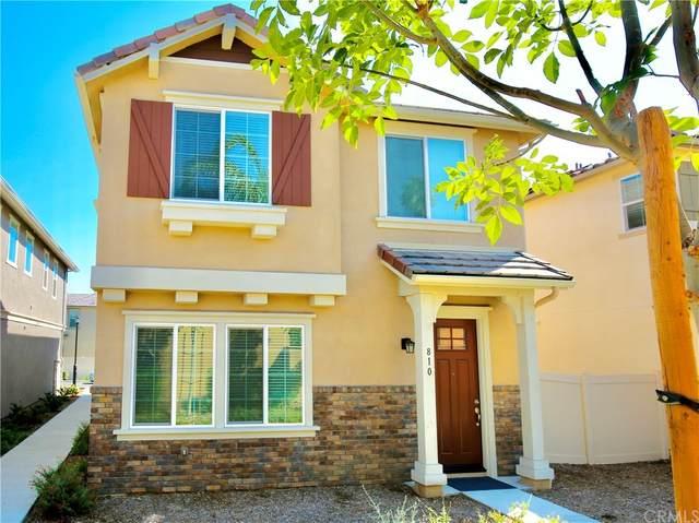 810 W Orchard Street, Rialto, CA 92376 (#TR21198049) :: Mainstreet Realtors®