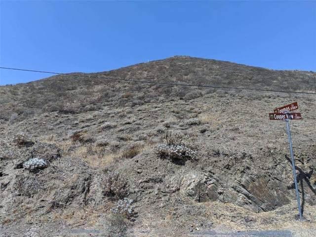 0 Cooper View Drive, Canyon Lake, CA 92587 (#IG21198487) :: EGA Homes