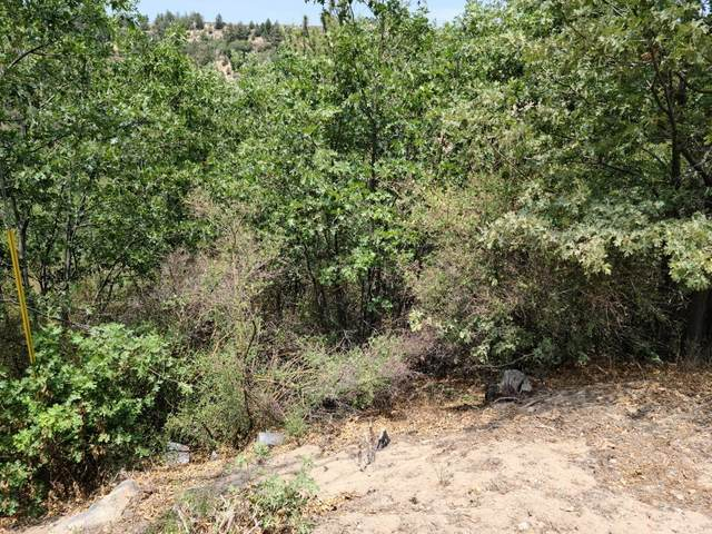 0 Elder Drive, Cedar Glen, CA 92321 (#EV21198645) :: The Marelly Group   Sentry Residential