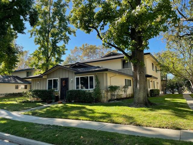 341 1st Street #4, Campbell, CA 95008 (#ML81857819) :: Necol Realty Group