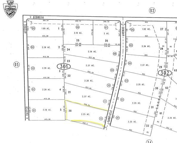 490301 12 Harper Lake, Barstow, CA 92347 (#EV21199054) :: Steele Canyon Realty