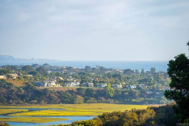 1023 Sea Village Drive, Cardiff By The Sea, CA 92007 (#NDP2110509) :: The Houston Team | Compass