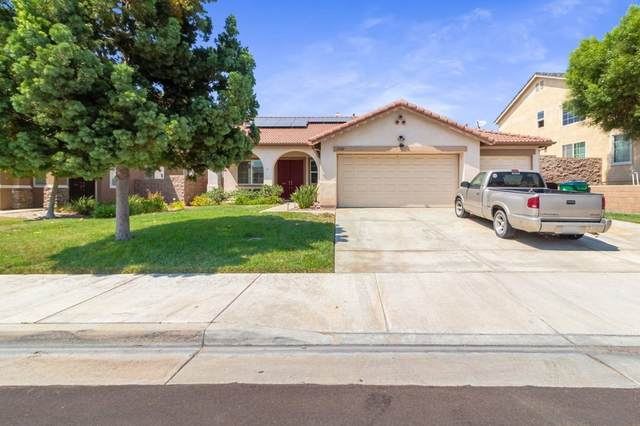 31382 Janelle Ln, Winchester, CA 92596 (#210025879) :: Steele Canyon Realty