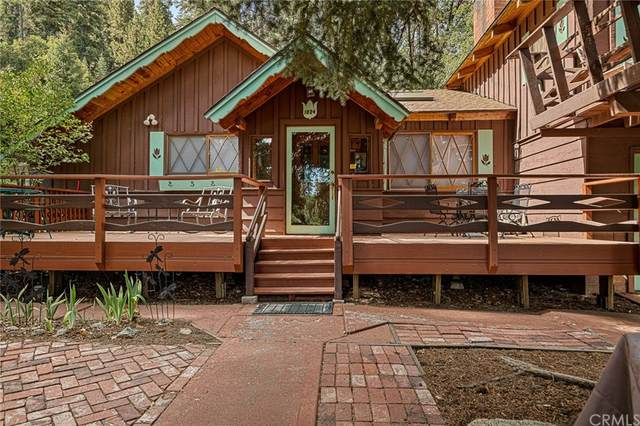 1024 Cameron Drive, Big Bear, CA 92315 (#EV21200879) :: The Marelly Group   Sentry Residential