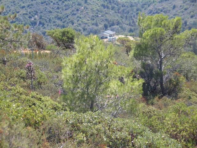 0 Sunset Drive, Julian, CA 92036 (#PTP2106480) :: Jett Real Estate Group