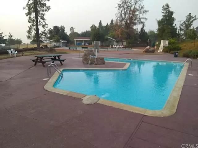 10161 El Capitan Way, Kelseyville, CA 95451 (#SC21201810) :: Jett Real Estate Group