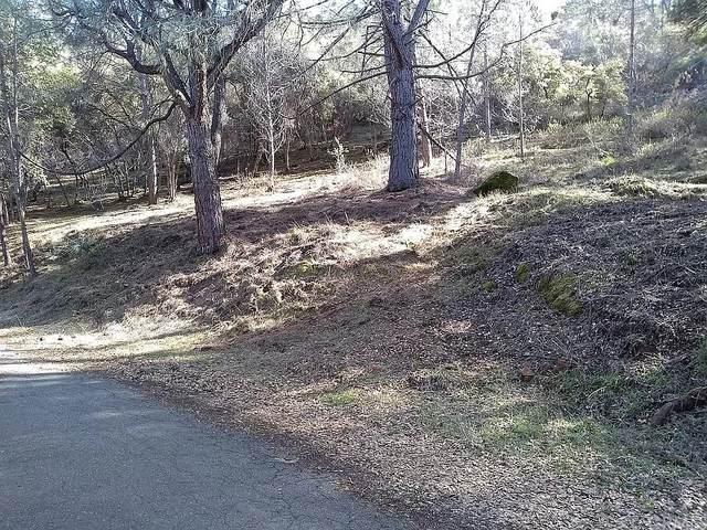 10479 Boren Bega Drive, Kelseyville, CA 95451 (#SC21201972) :: Blake Cory Home Selling Team