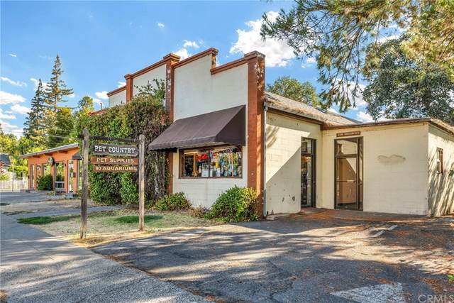 1170 N Main Street, Lakeport, CA 95453 (#LC21191620) :: Steele Canyon Realty