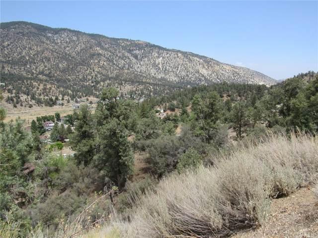 0 Lakeview Drive, Frazier Park, CA 93225 (#CV21202907) :: RE/MAX Empire Properties