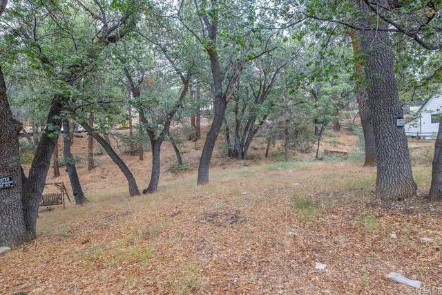 665 Butte Drive, Big Bear, CA 92315 (#PW21203146) :: Steele Canyon Realty