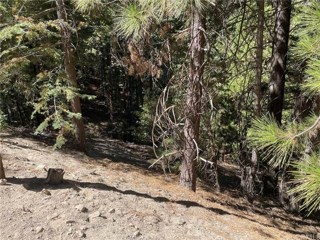 0 Brentwood Drive, Lake Arrowhead, CA 92352 (#EV21203818) :: The Marelly Group | Sentry Residential