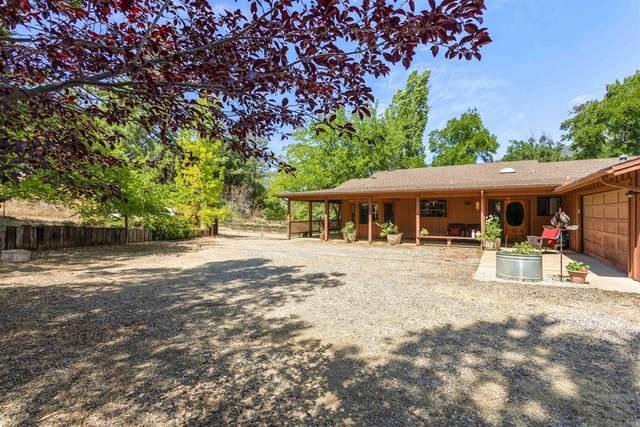 25394 Mesa Grande Road, Santa Ysabel, CA 92070 (#NDP2110709) :: Steele Canyon Realty