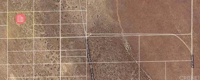 0 Approx 240th St West, Rosamond, CA 93560 (#SR21203872) :: Steele Canyon Realty