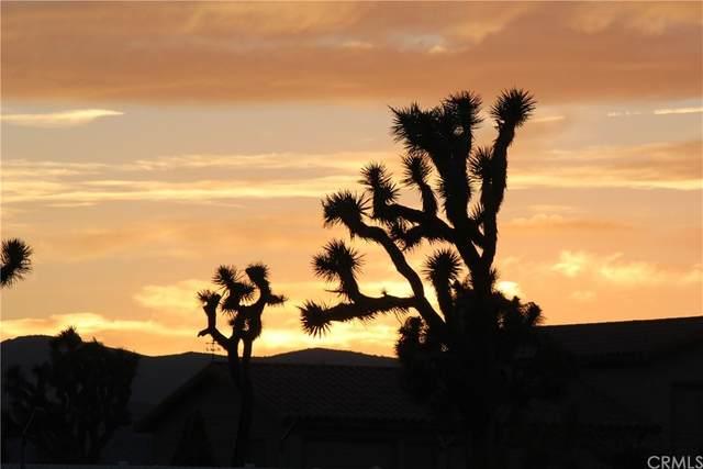 0 Sun Mesa, Yucca Valley, CA 92284 (MLS #EV21204141) :: ERA CARLILE Realty Group