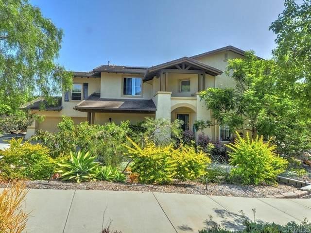 569 Kristen Ct., Encinitas, CA 92024 (#NDP2110724) :: Steele Canyon Realty