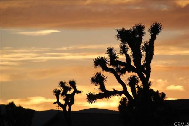 0 Sun Oro Road, Yucca Valley, CA 92284 (MLS #EV21204174) :: ERA CARLILE Realty Group