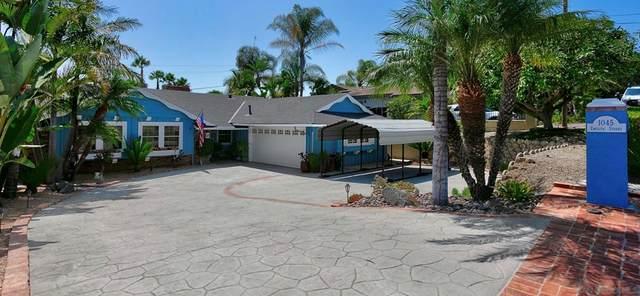 1045 Emelita St, Fallbrook, CA 92028 (#210026293) :: Steele Canyon Realty