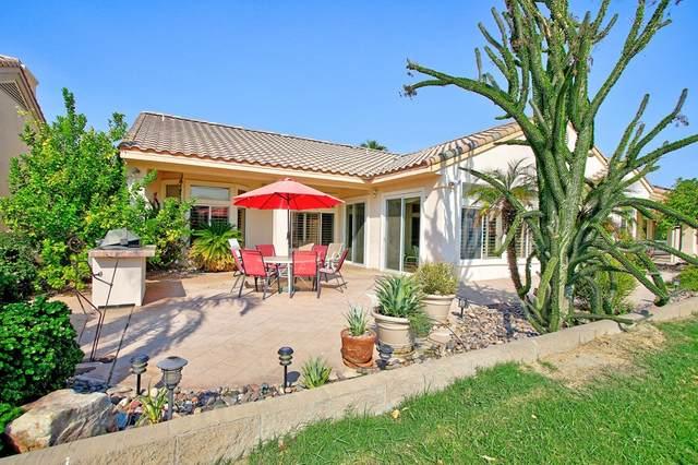37578 Mojave Sage Street, Palm Desert, CA 92211 (#219067617DA) :: Steele Canyon Realty