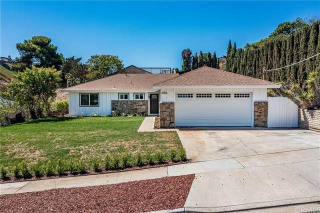 33451 Palo Alto Street, Dana Point, CA 92629 (#OC21204381) :: Doherty Real Estate Group