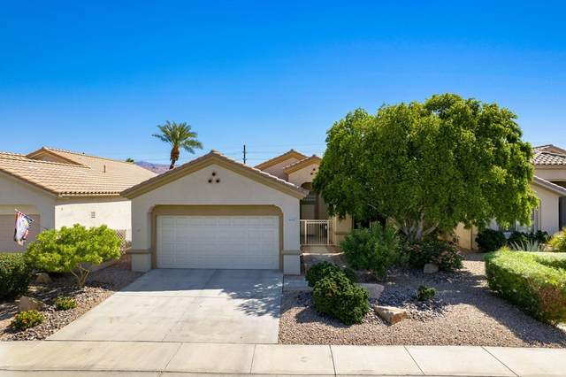 39122 Narcissus Drive, Palm Desert, CA 92211 (#219067638DA) :: Steele Canyon Realty
