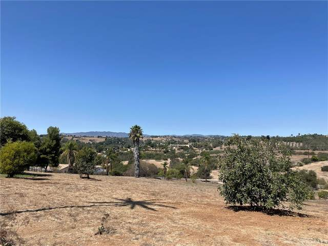 0 Reche Road, Fallbrook, CA 92028 (#ND21202343) :: The Marelly Group | Sentry Residential