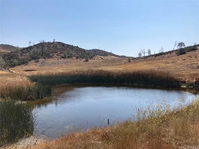 27102 Morgan Valley Road, Lower Lake, CA 95457 (#LC21204909) :: Corcoran Global Living