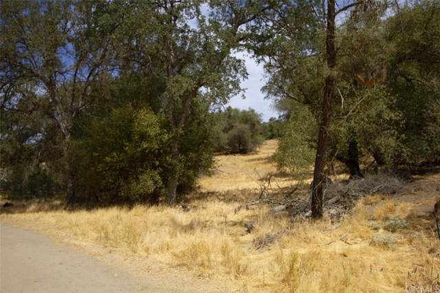30150 Yosemite Springs Parkway, Coarsegold, CA 93614 (#FR21204918) :: RE/MAX Empire Properties
