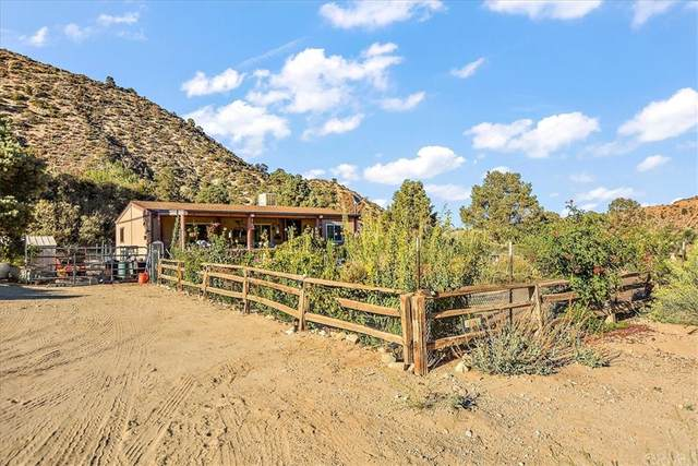 1614 Desert Front Road, Wrightwood, CA 92372 (#CV21205127) :: The Marelly Group   Sentry Residential