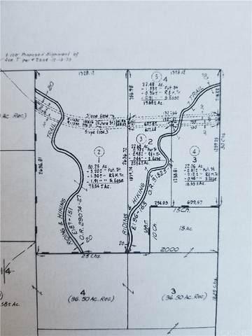 180 W Vac/Vic Price Canyon 180W /Ave Avenue, Lake Hughes, CA 93532 (#SR21205218) :: Hart Coastal Group