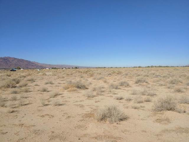 32504 Lakeview Avenue, Newberry Springs, CA 92365 (MLS #539188) :: The Zia Group