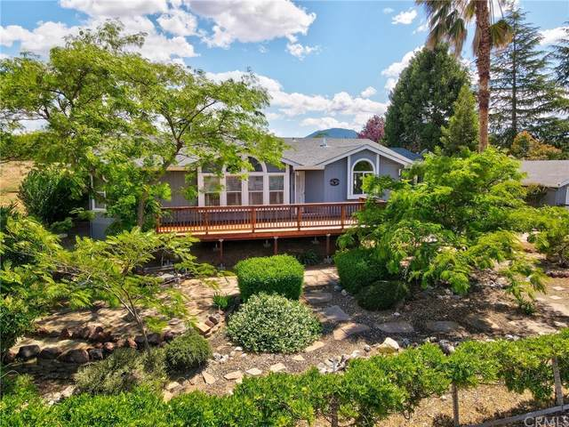 10949 Wheeler Drive, Kelseyville, CA 95451 (#LC21202461) :: A|G Amaya Group Real Estate