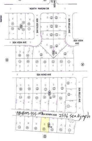 2536 Sea Nymph Avenue, Salton City, CA 92275 (#219067705DA) :: RE/MAX Empire Properties