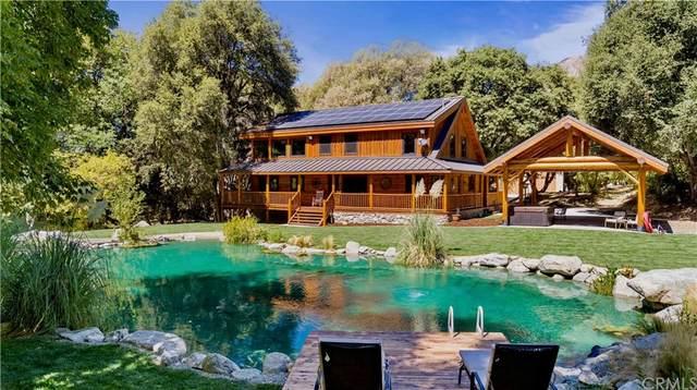 38207 Potato Canyon Road, Oak Glen, CA 92399 (#OC21205348) :: Latrice Deluna Homes