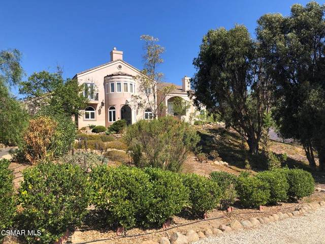 10827 Pacific View Drive, Malibu, CA 90265 (#221005123) :: Cochren Realty Team | KW the Lakes