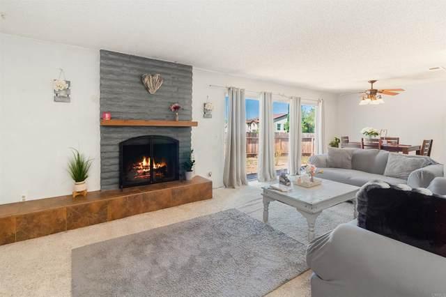 339 Via Serra, Oceanside, CA 92057 (#NDP2110854) :: Steele Canyon Realty